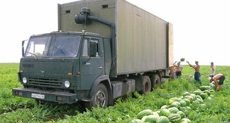 Сбор урожая - работа командная