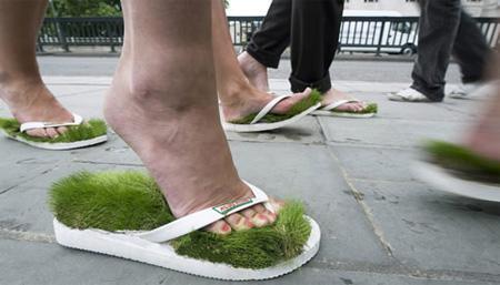 Личный газон прямо у ваших ног