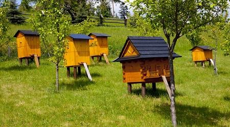 Вот такие красивые домики для пчел
