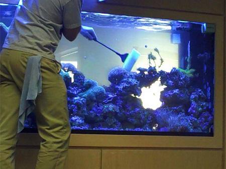 Чистка аквариума - процесс трудоемкий