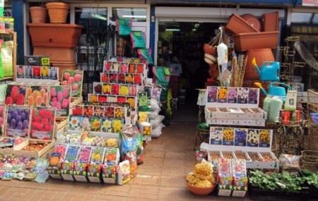 Магазин семян