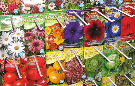 Большинство дачников сажают семена по календарю огородника