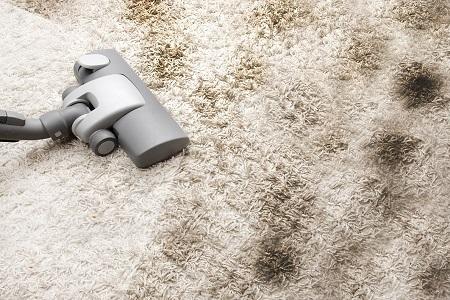 Чистка ковров бизнес идея