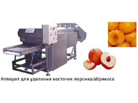 Производство сухофруктов оборудование
