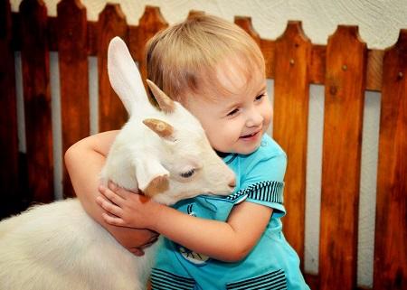Маленькие дети очень любят животных