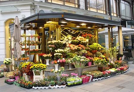 Собственный цветочный магазин - красивый и прибыльный бизнес