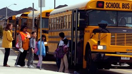 Школьный автобус отличается от обычного транспорта