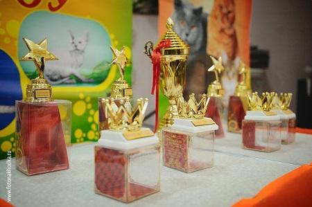 Победа в конкурсе - лучшая награда хозяину питомца за труды