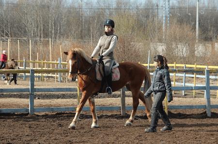 Для конного клуба понадобится участок немалых размеров