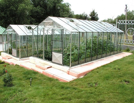 Бизнес на даче по выращиванию зелени